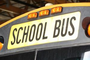 Bus - Transportation pics 012