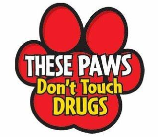 These Paws Don't Touch Drugs